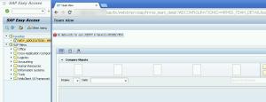 Рисунок 7. Ошибка, возникшая в момент запуска Web Dynpro приложения